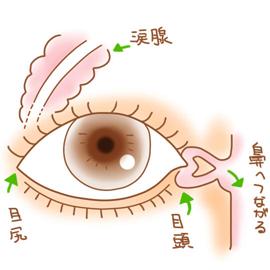 花粉 症 目やに 花粉症のときに現れる7つの目の症状【腫れ・かゆみ・目やになど】